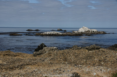 Point_Lobos_Monterey_20090604-07181.jpg