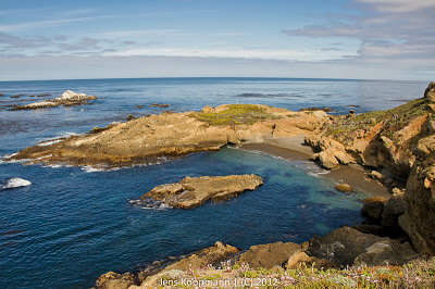 Point_Lobos_Monterey_20090604-07215.jpg