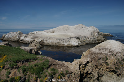 Point_Lobos_Monterey_20090604-07280.jpg