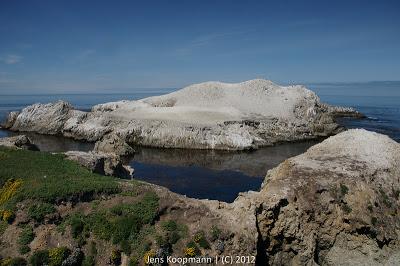 Point_Lobos_Monterey_20090604-07280.jpg