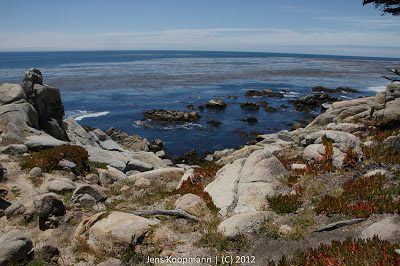 Point_Lobos_Monterey_20090604-07354.jpg