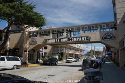 Point_Lobos_Monterey_20090604-07389.jpg
