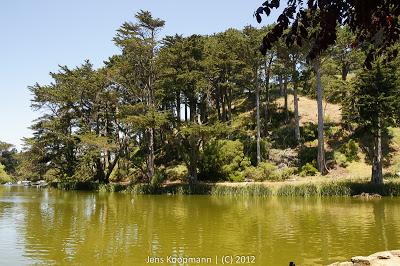 SF_20090621-00066.jpg