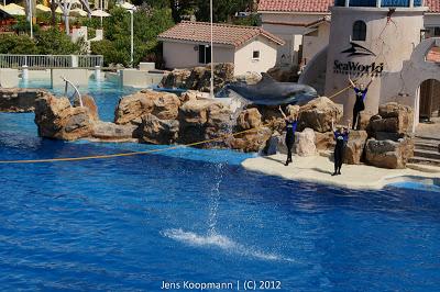 San_Diego_Seaworld_20090611-08872.jpg