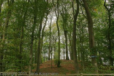 Jakobsweg_Tag1_DSC02151.jpg