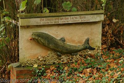 Jakobsweg_Tag3_DSC02312.jpg