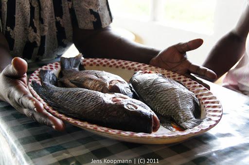 Kenia_20110808_03904