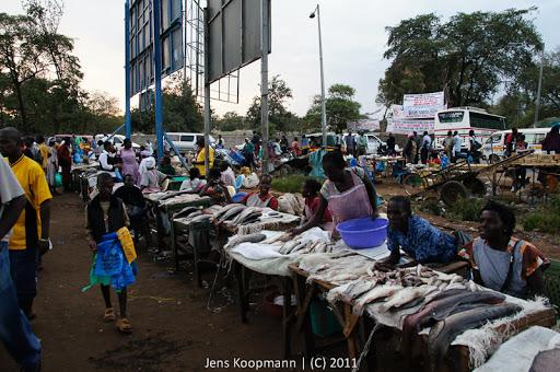 Kenia_20110808_03982