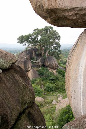 Kenia_20110811_04429