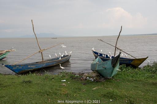 Kenia_20110812_04516