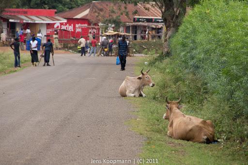 Kenia_20110813_04611