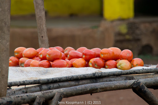 Kenia_20110813_04630