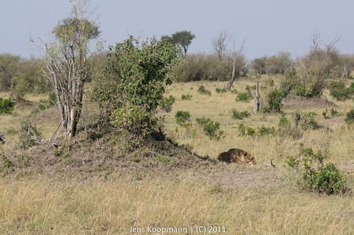 Kenia_20110816_04929