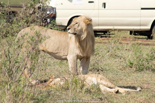 Kenia_20110816_05024