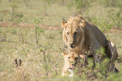 Kenia_20110816_05034