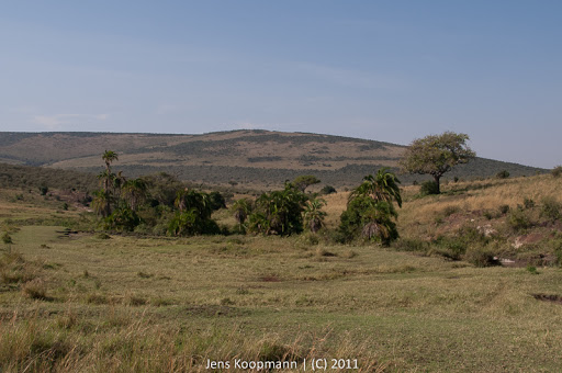 Kenia_20110816_1758