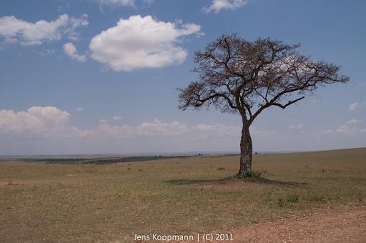 Kenia_20110816_1832