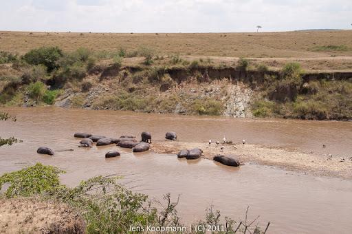 Kenia_20110816_1848