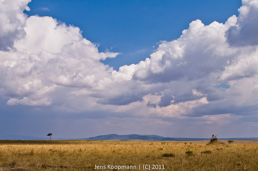 Kenia_20110816_1862
