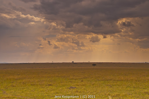Kenia_20110816_1928