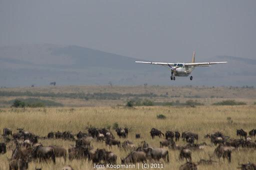 Kenia_20110817_05743