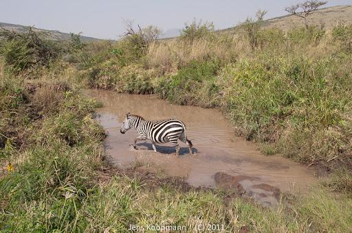 Kenia_20110817_1972