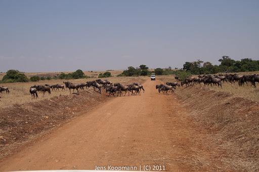 Kenia_20110817_2022