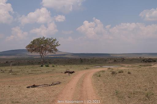 Kenia_20110817_2088