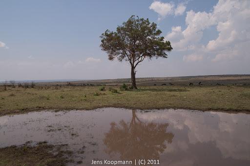 Kenia_20110817_2089