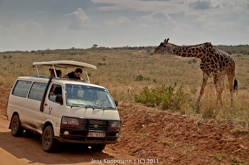 Kenia_20110817_2117
