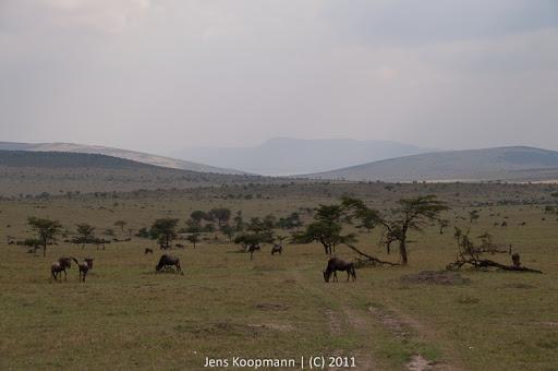 Kenia_20110817_2132