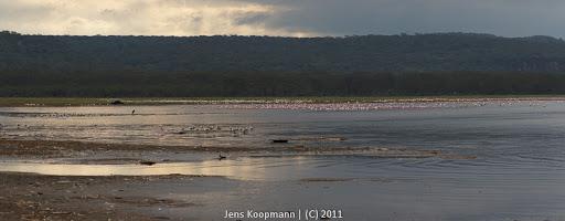 Kenia_20110818_06423