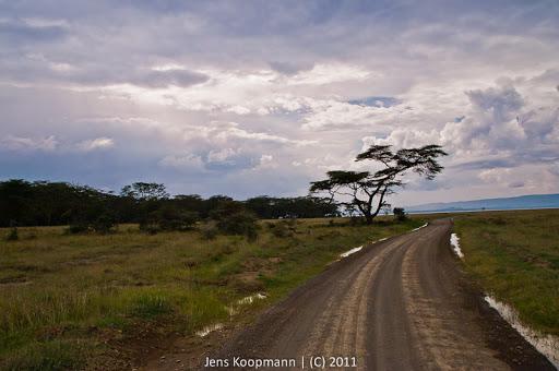 Kenia_20110818_2175