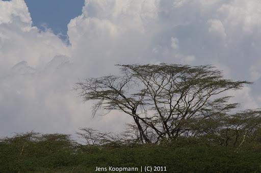 Kenia_20110819_06858