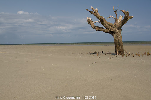 Kenia_20110821_07289