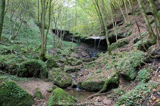 Wanderung_Kordel_Ramstein-09032