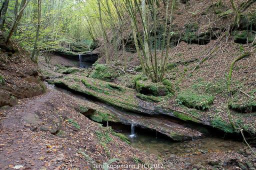 Wanderung_Kordel_Ramstein-09038