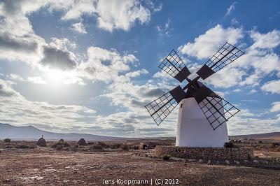 Fuerteventura-03733.jpg