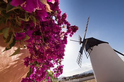 Fuerteventura-03773.jpg