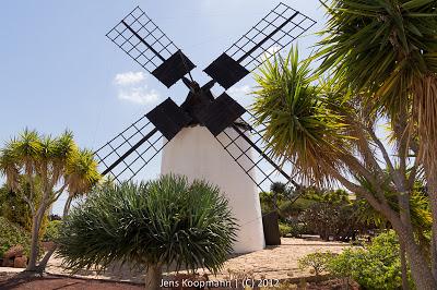 Fuerteventura-03867.jpg