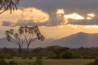 Samburu-02797.jpg