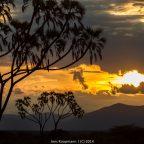 Reisebericht Kenia 2014 – Teil 3: Elefantöses Samburu