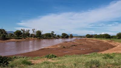 Samburu-1010180.jpg