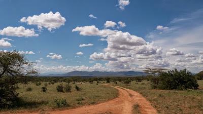 Samburu-1010199.jpg