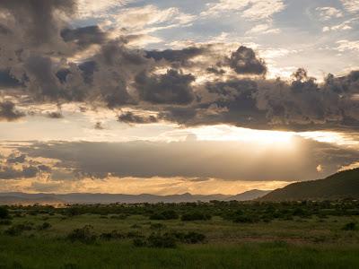 Samburu-1010229.jpg