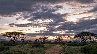 Samburu-1010234.jpg
