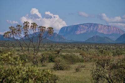 Samburu-1120505.jpg