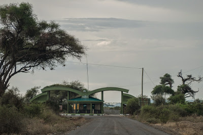 Amboseli-1120887.jpg