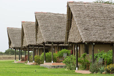 Samburu-Sweetwater-02849.jpg