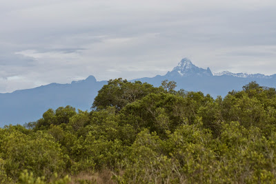 Samburu-Sweetwater-02908.jpg